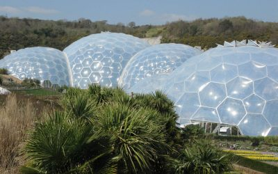 Eden Project, un jardin botanique sous bulle