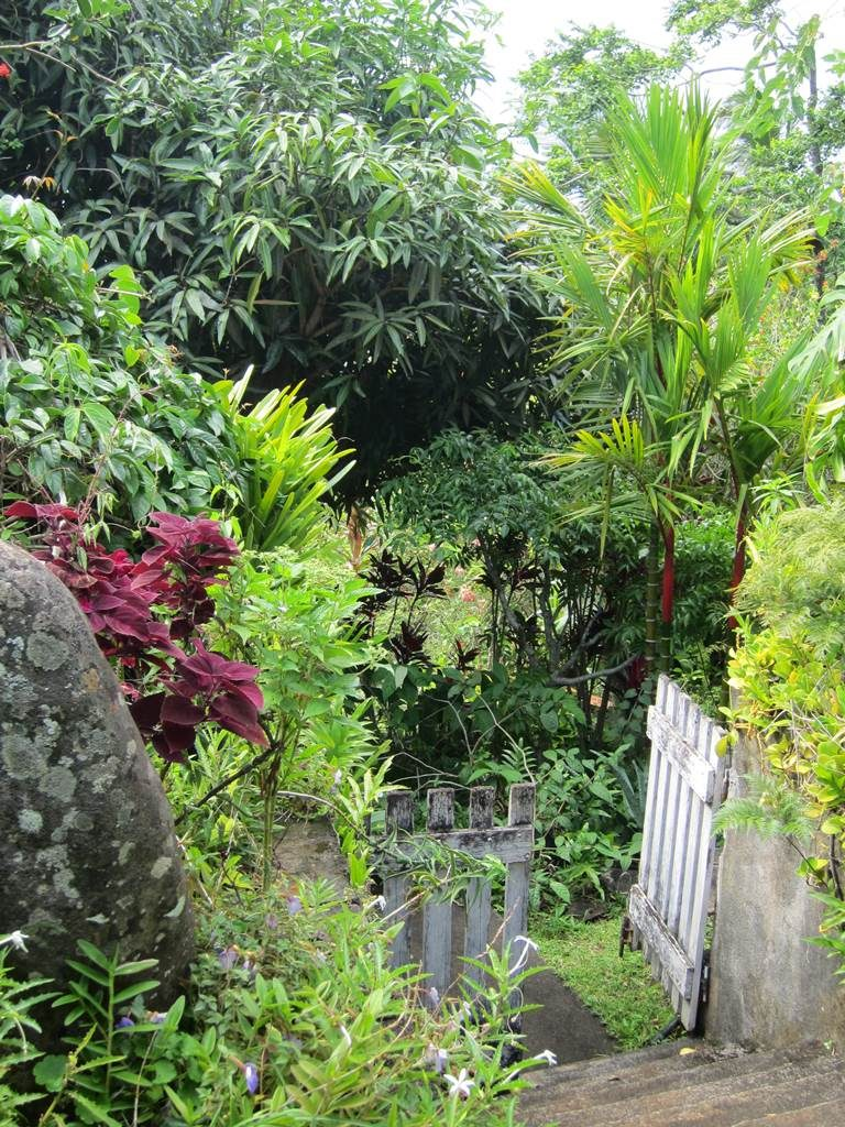 Jardin de Cendrillon