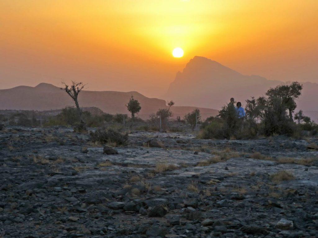 Sultanat d'Oman Djebel Akhdar