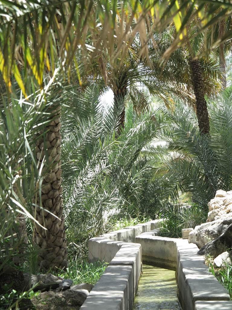 Oman wadi