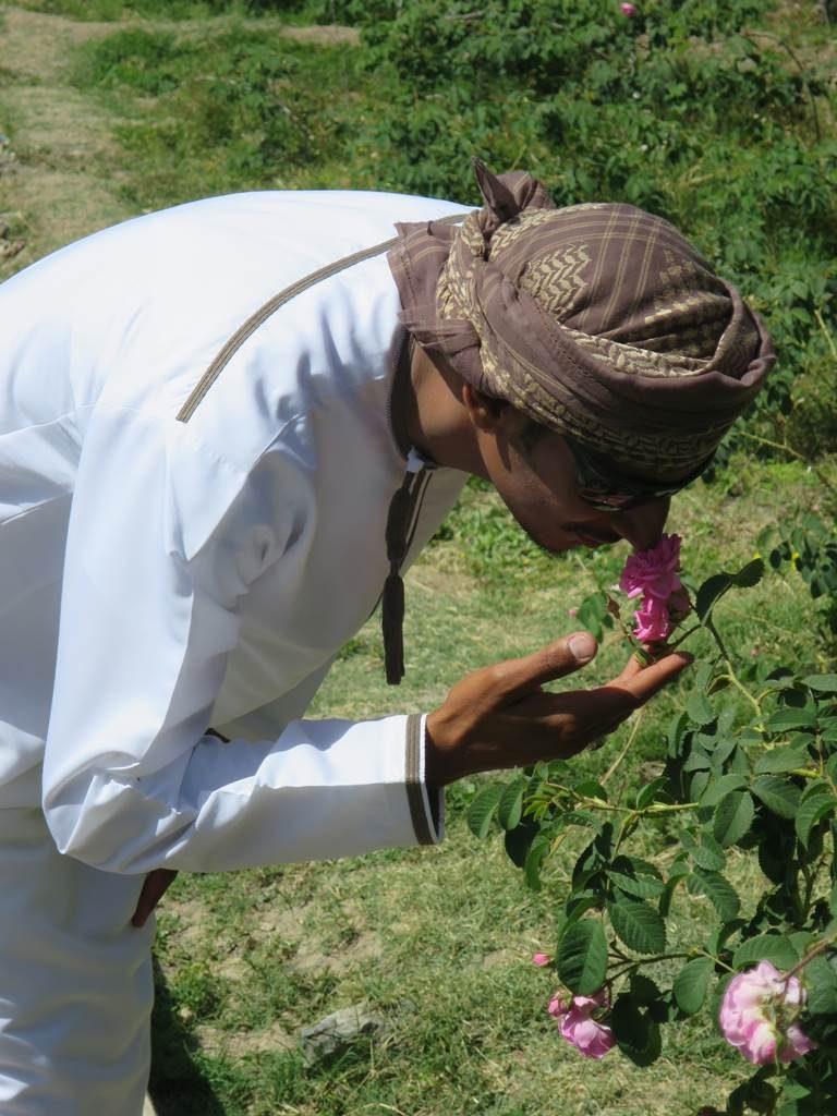 Oman Plateau Sayq