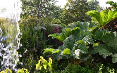 Jardin du Beau Pays à Marck