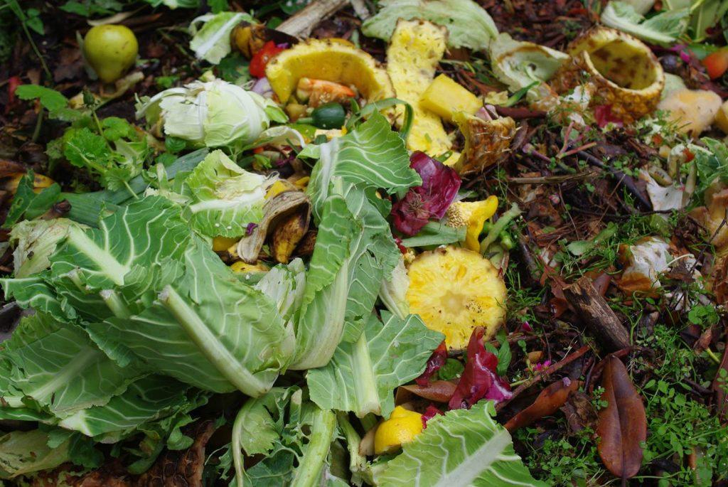 Faites votre compost maison la terre est un jardin - Utilisation du marc de cafe au jardin ...