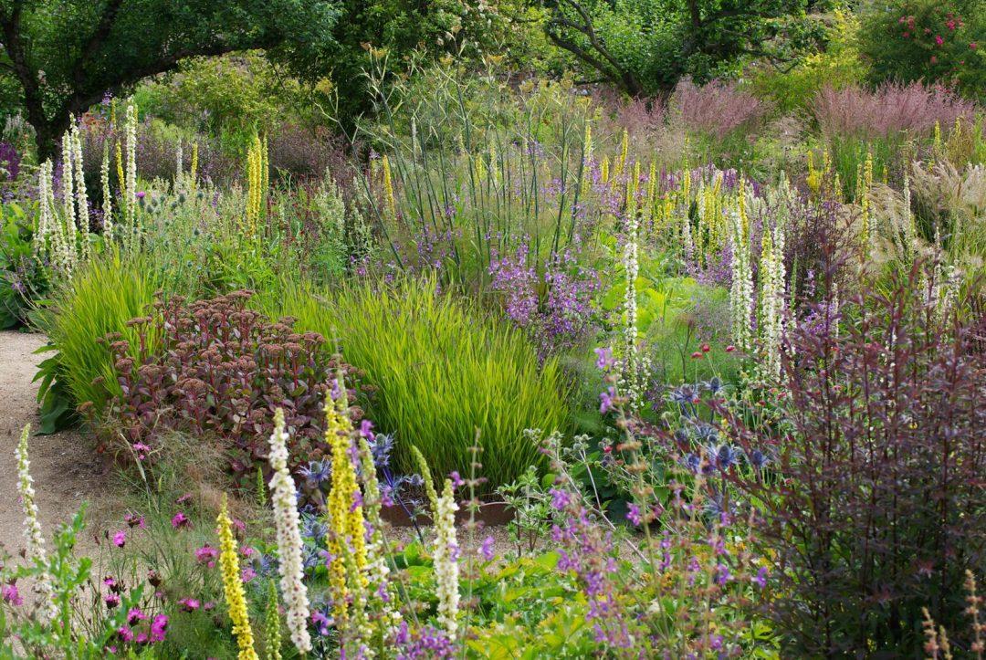 Cambo gardens