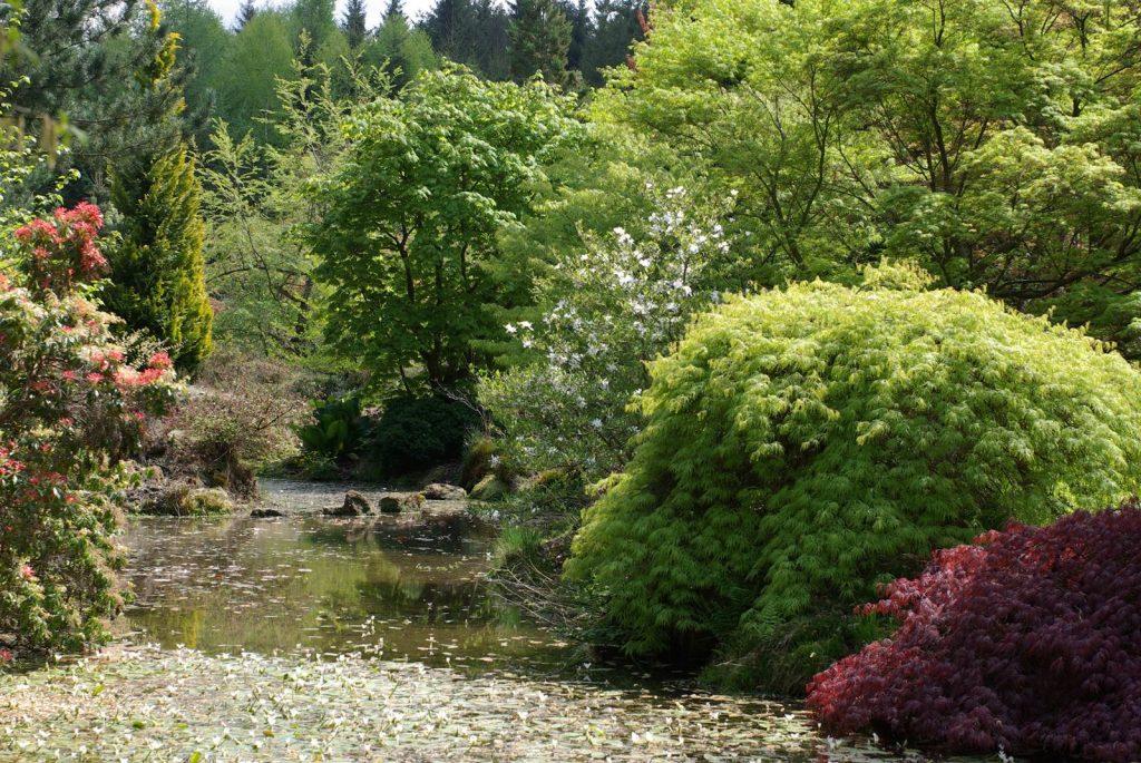 Jardin botanique de Gondremer