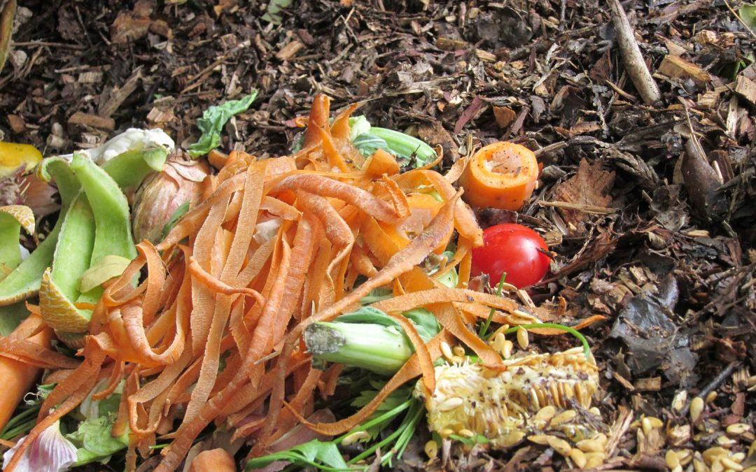faire du composte maison Faites votre compost maison