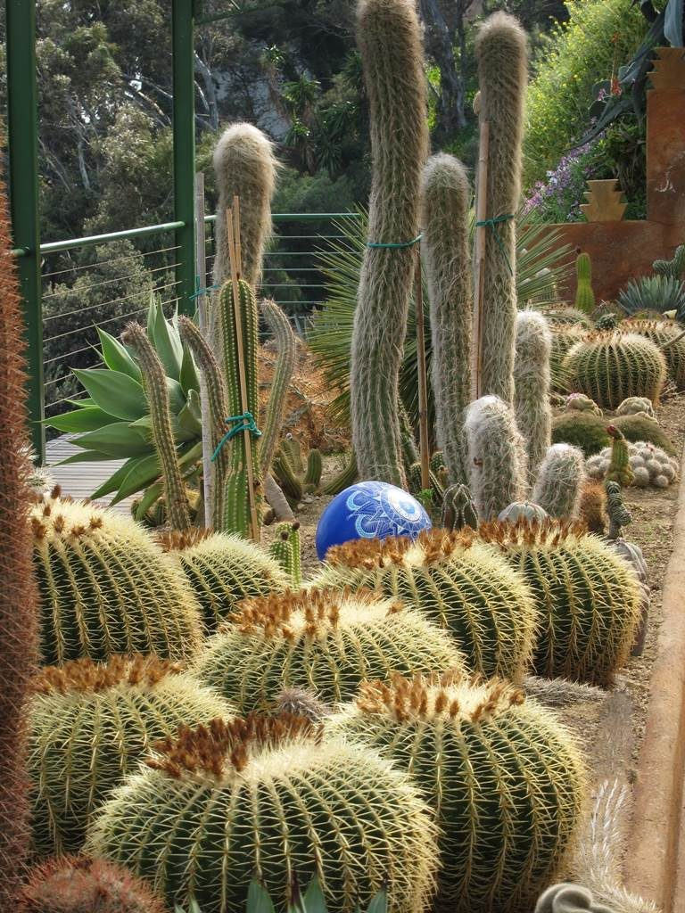 Jardin exotique Pallanca