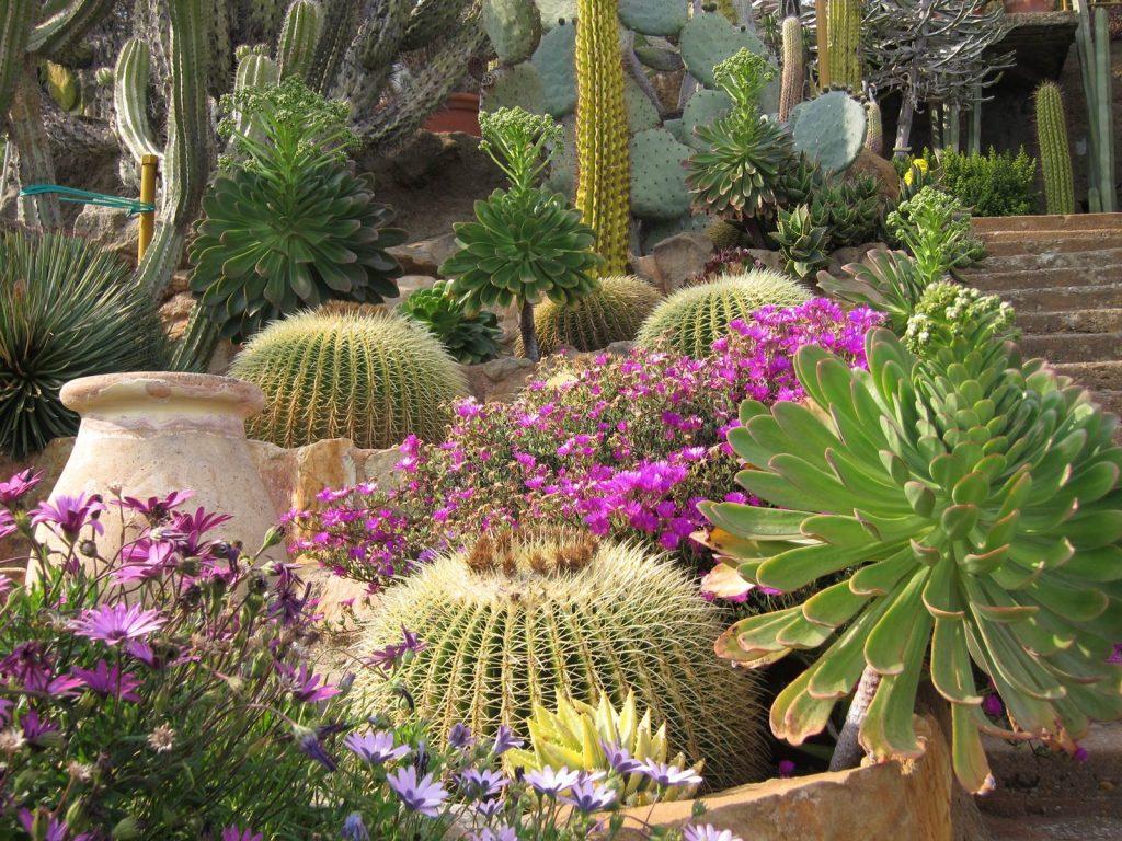 rocaille exotique agrable comment amenager un jardin zen dpaysant le jardin exotique peut se. Black Bedroom Furniture Sets. Home Design Ideas