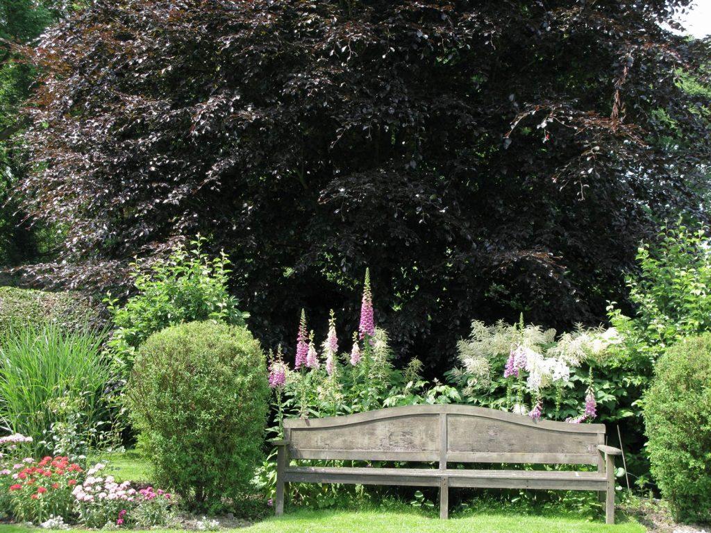 Cahier de Jardin Odette Rolin