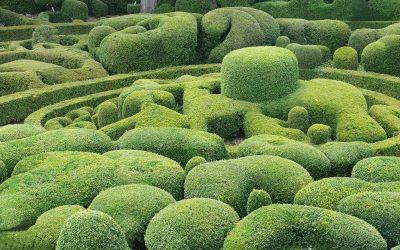 Art topiaire, sculpture en vert