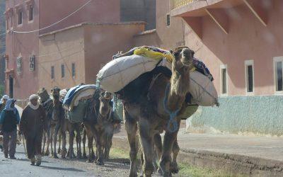 Maroc, les Montagnes de l'Atlas
