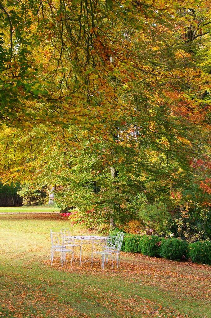feuillages automne