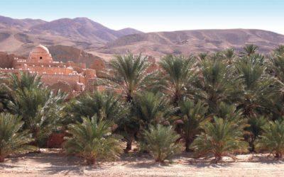 Le grand Sud tunisien