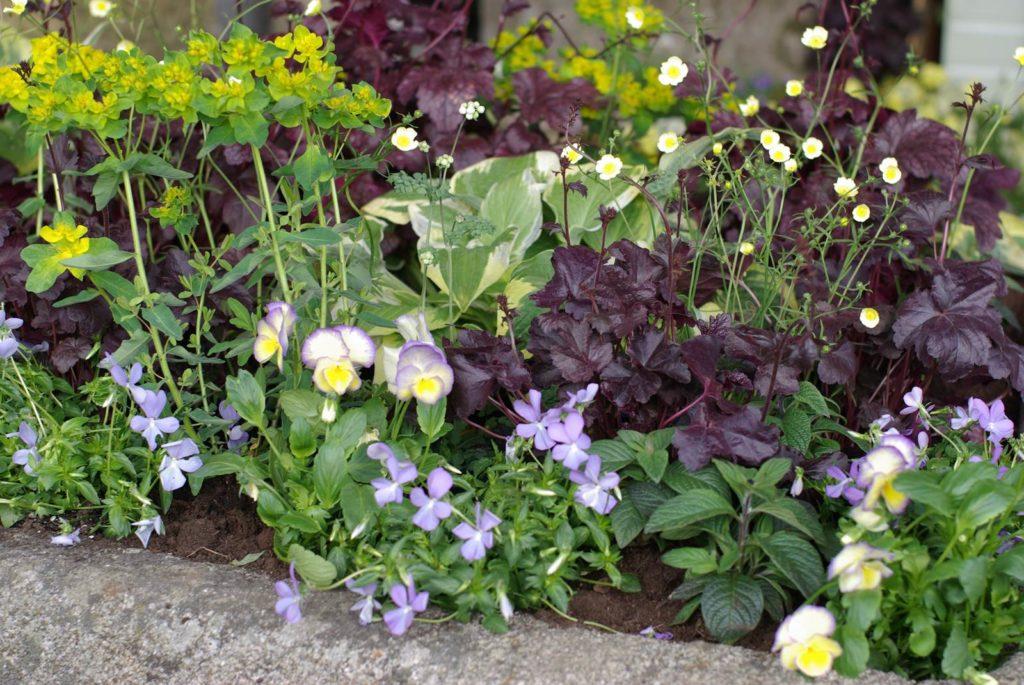 Almanach du jardin