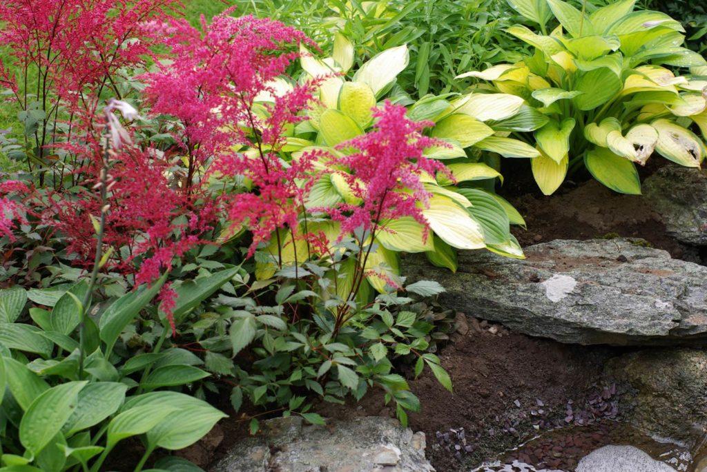 jardin feng shui