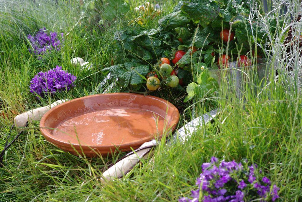 Astro jardin Vierge