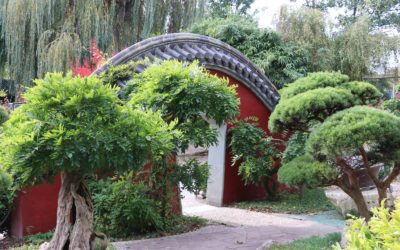 Le jardin chinois de Pairi Daiza