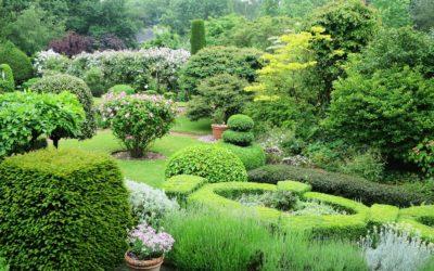 Un jardin de collectionneur à Lille