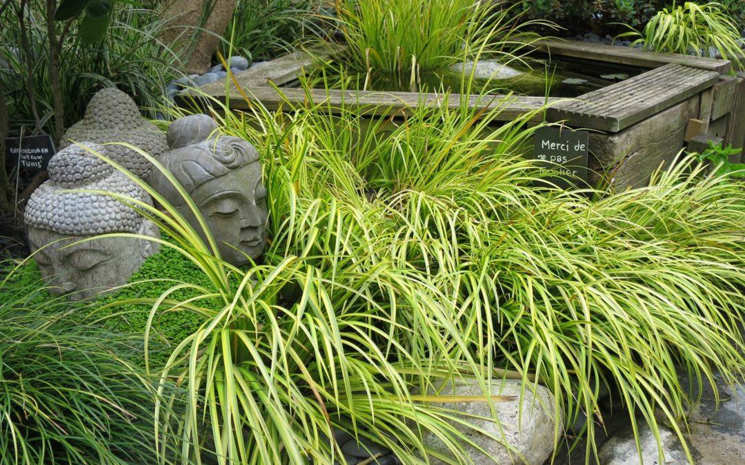 Le Sentier du Chimonobambusa, jardin zen