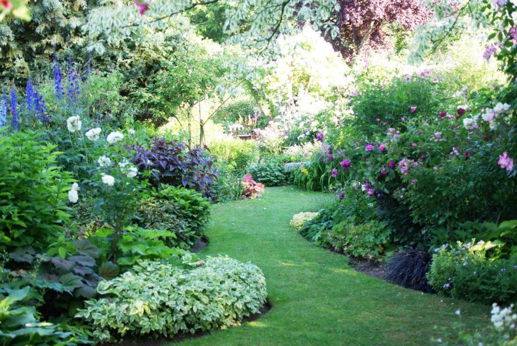 Le Jardin Du Rosieriste Andre Eve Ilot Secret La Terre Est Un Jardin