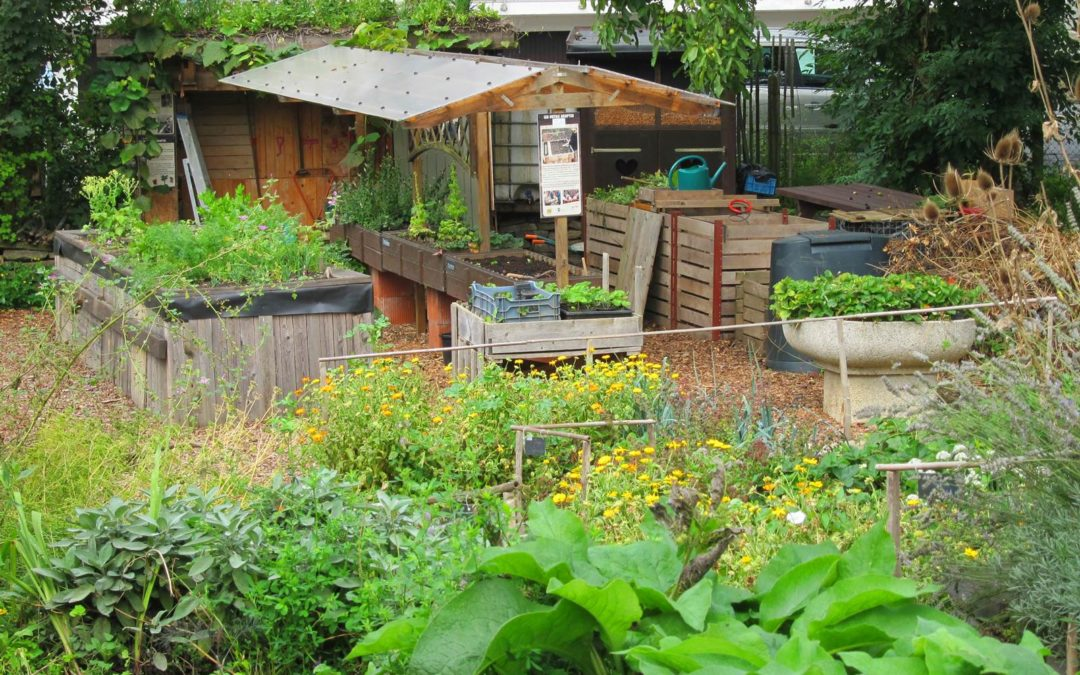 Le jardin de Nature & Progrès, ouvert à tous