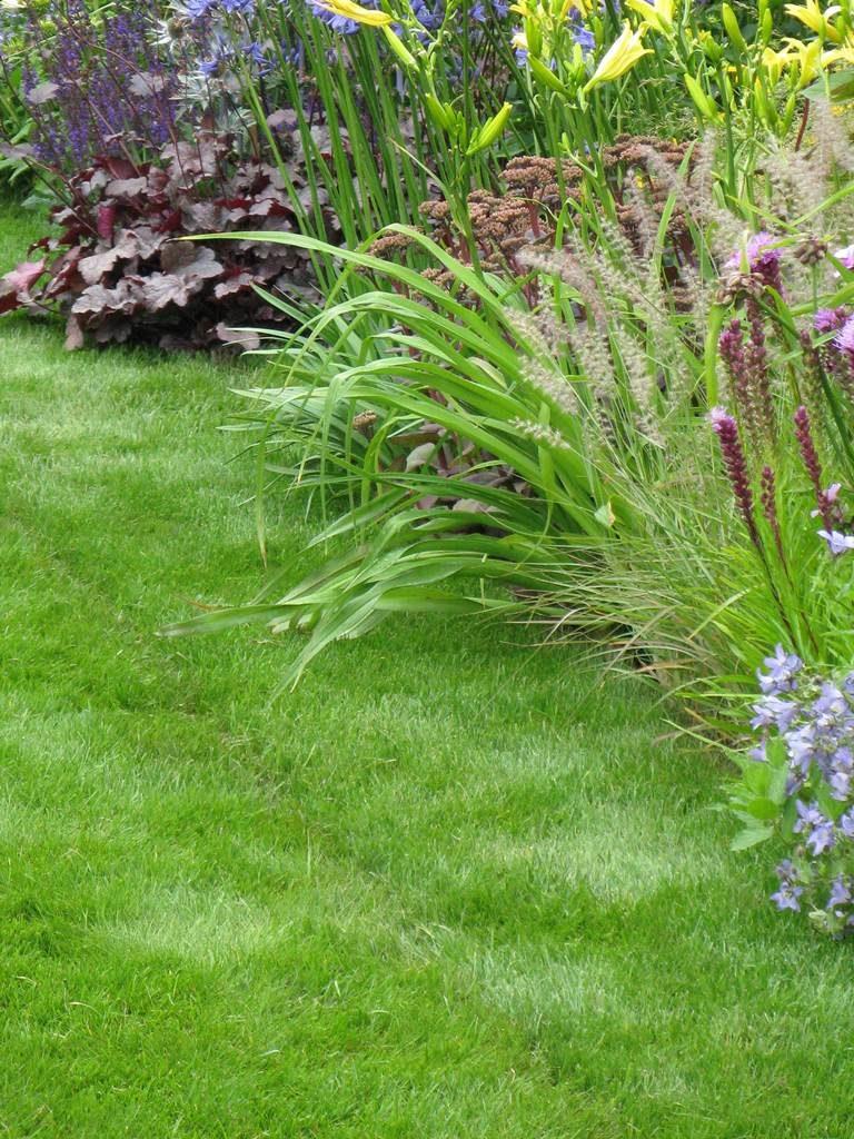 guide pratique du gazon la terre est un jardin. Black Bedroom Furniture Sets. Home Design Ideas
