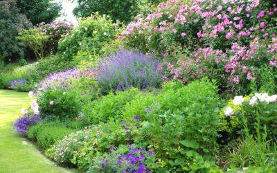 Le Jardin de la ruelle rose
