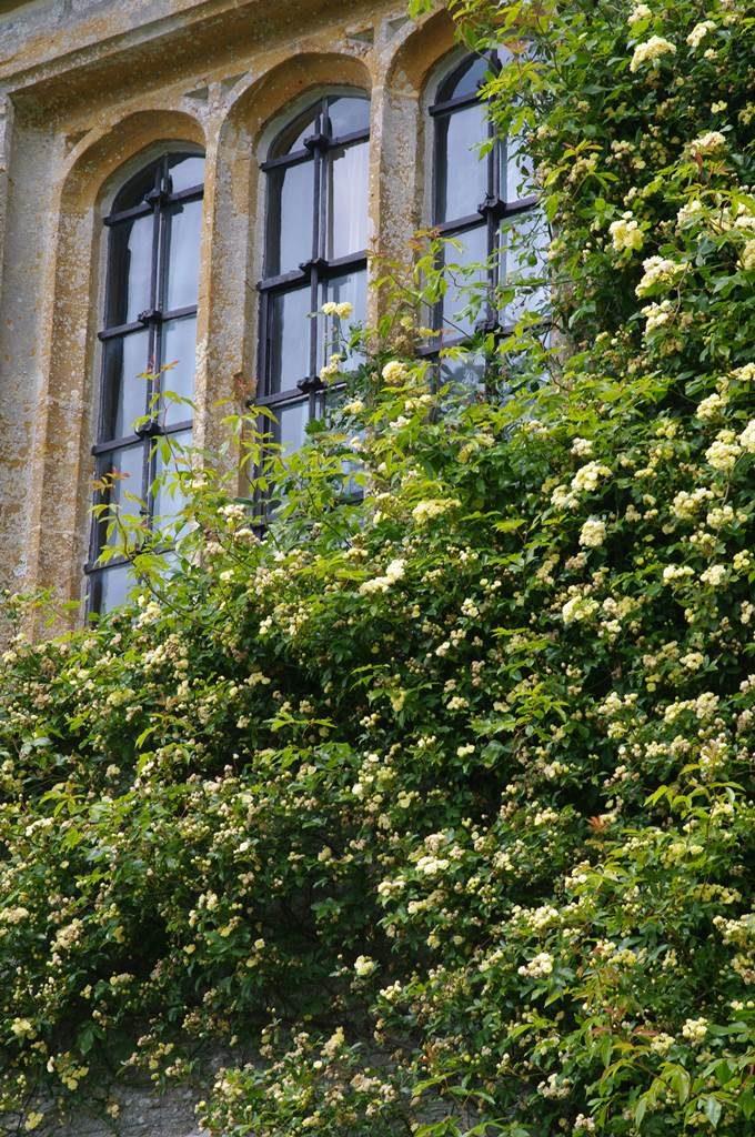 Mytes Cary Manor