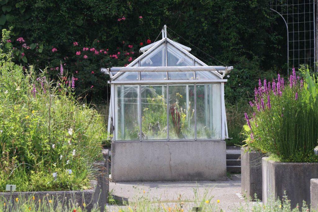 Serre et abri de jardin, avec ou sans permis? - La terre est un jardin