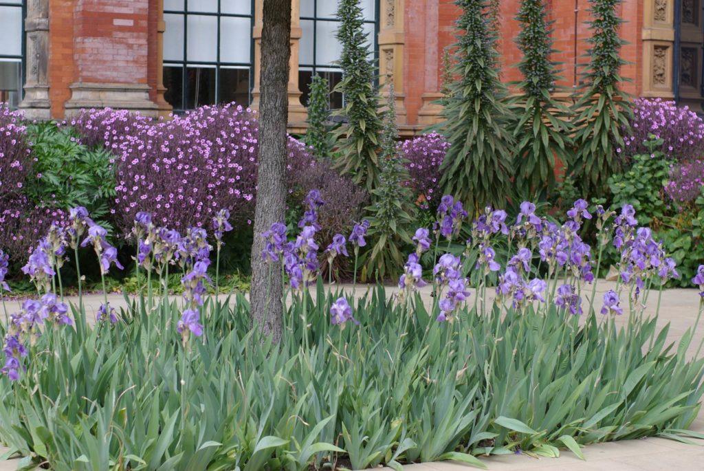 John Madejski Garden