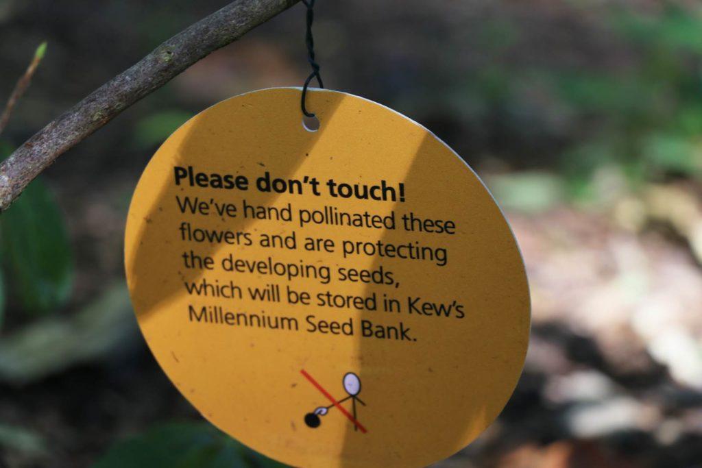 Kew Arboretum
