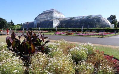 Kew Gardens, un jardin botanique royal