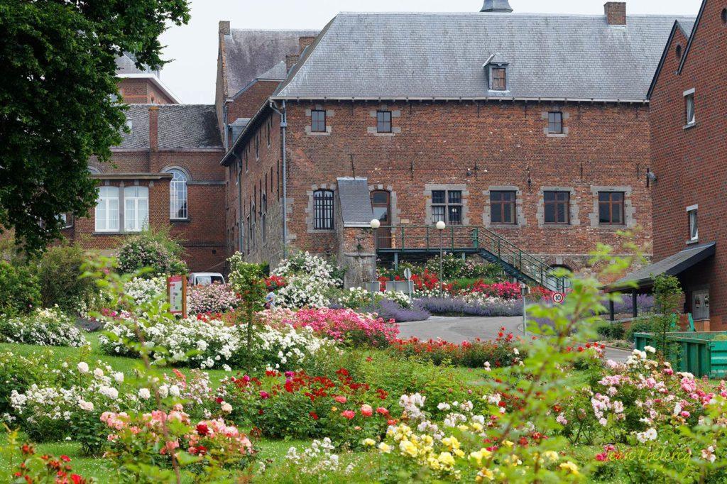 Conservatoire de roses (c) Jean Leclercq