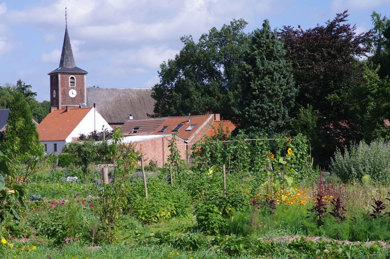 Un Petit Potager Productif potager en permaculture à nethen - la terre est un jardin