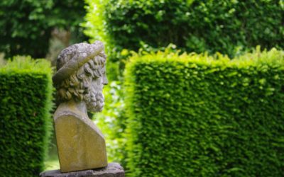 Le jardin baroque de Thierry Bosquet