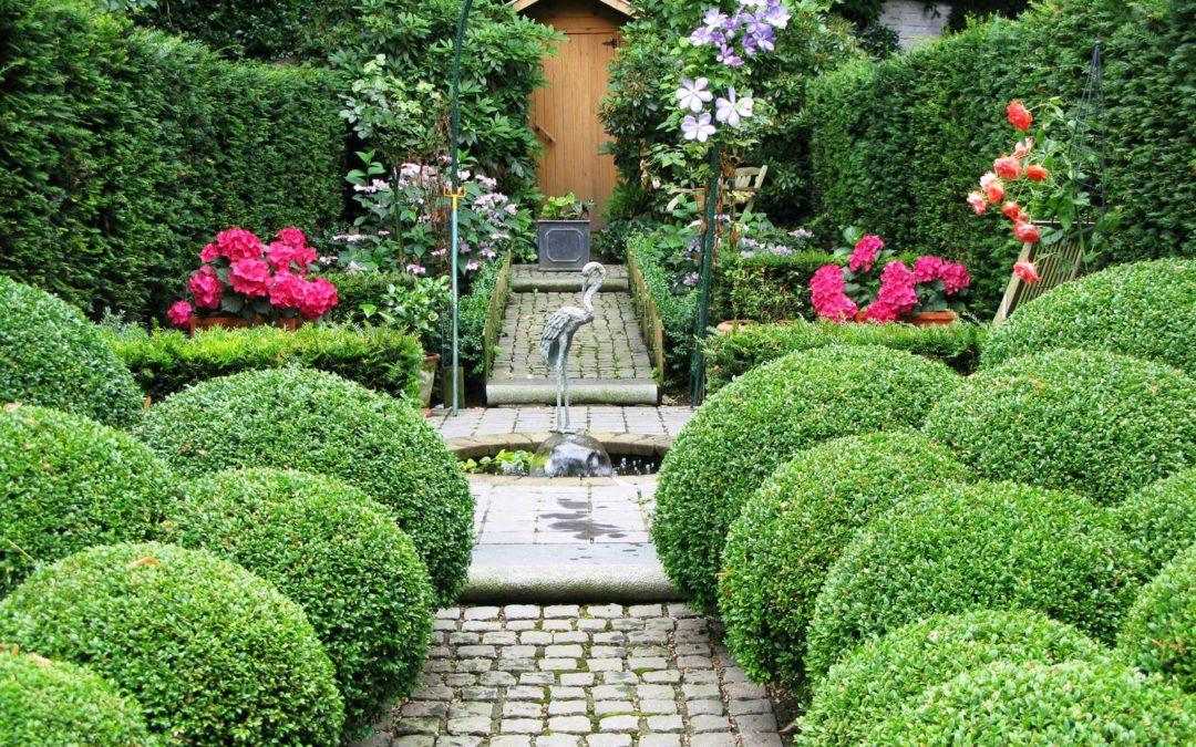 Un jardin haute couture à Ixelles