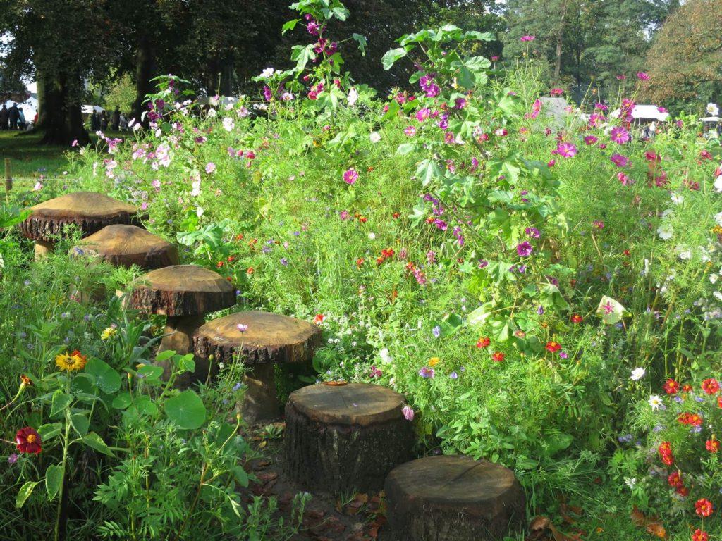 Beervelde jardin éphémère Silene