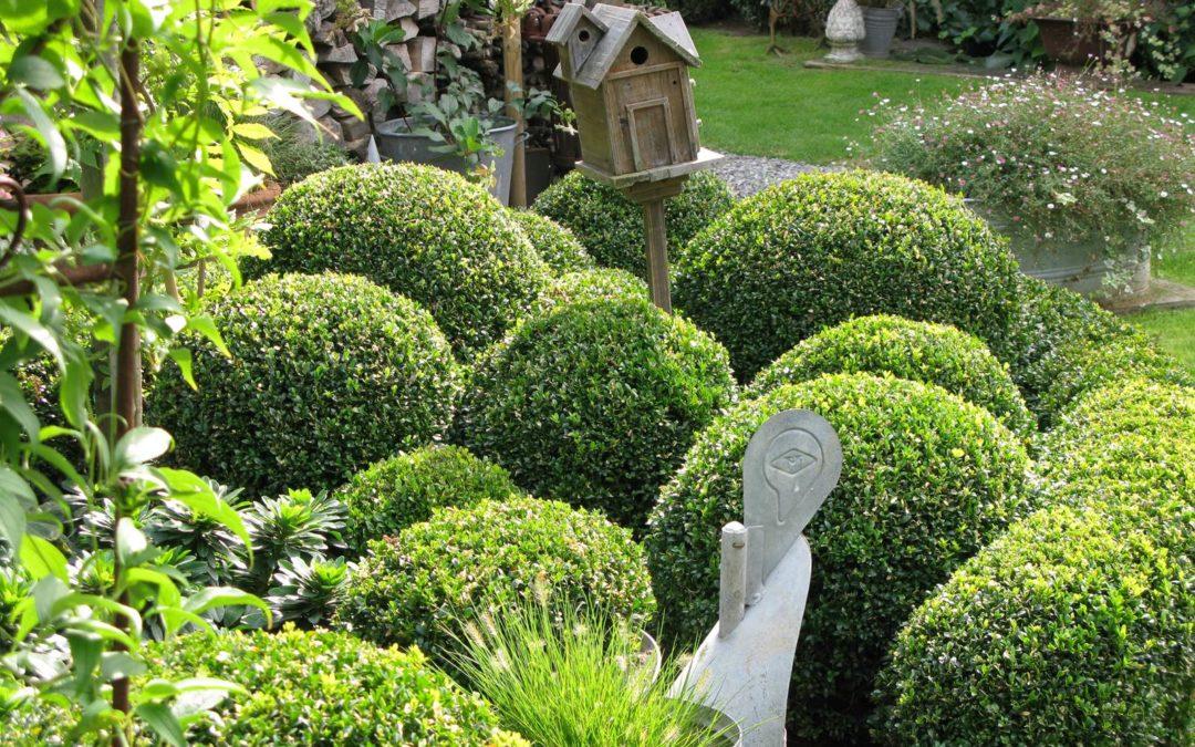 Le jardin de Marie-Françoise à Wavre