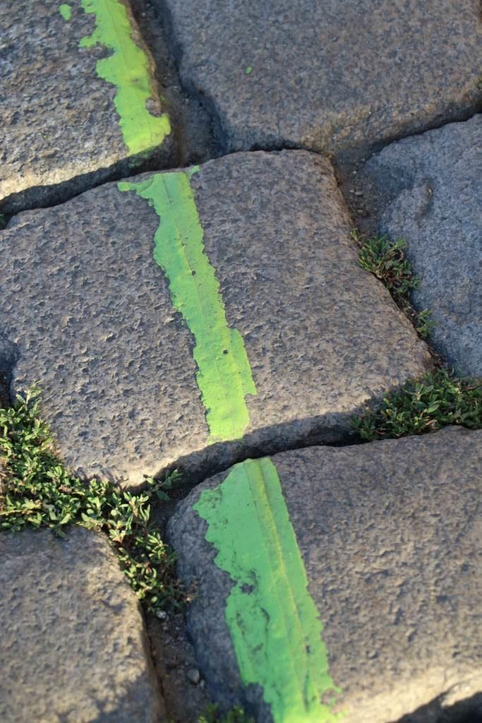 Nantes ligne verte
