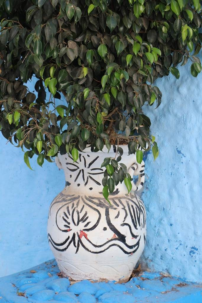 Rabat kasbah des Oudaia