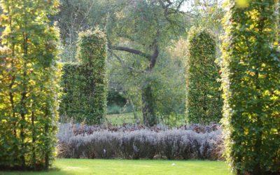 Le jardin d'Agnès et Paul, un bouquet pour les abeilles
