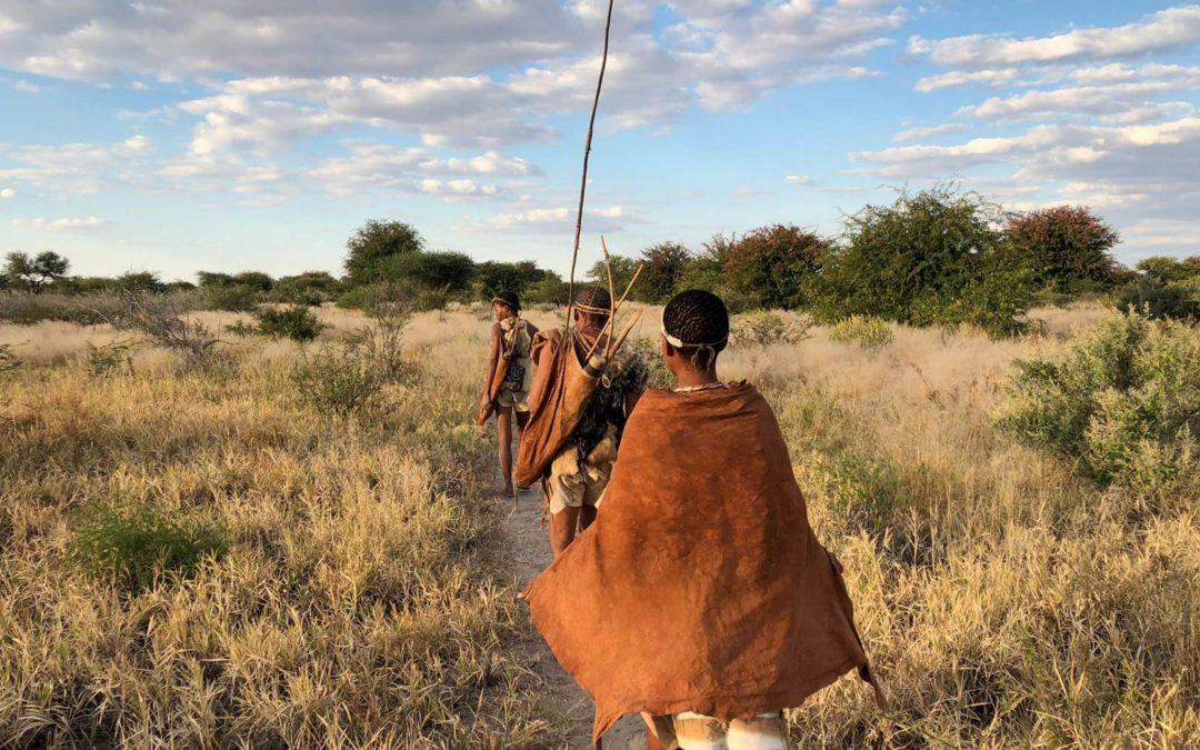 Les voyages en Afrique Australe de Poesy by Sophie