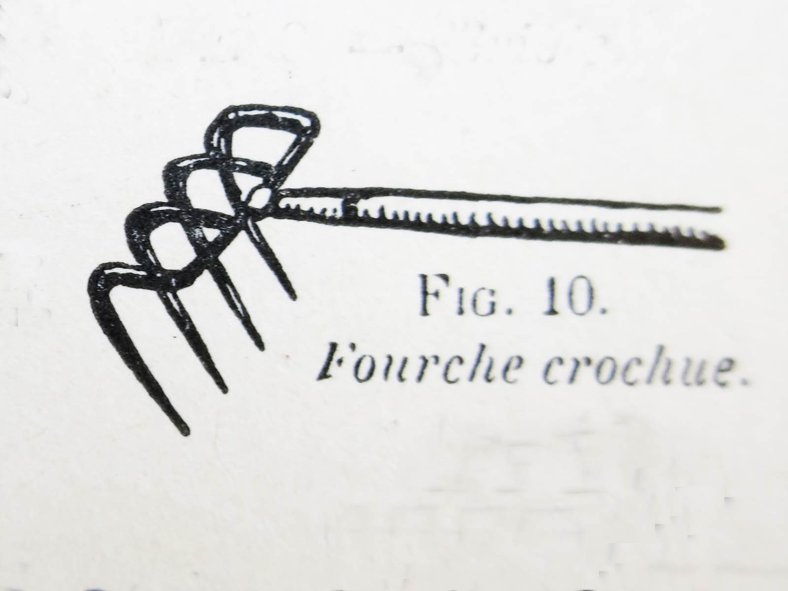 Fourche crochue