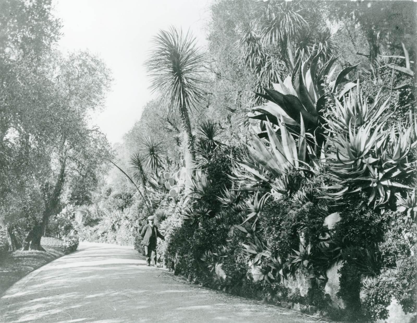Grasse Villa Victoria