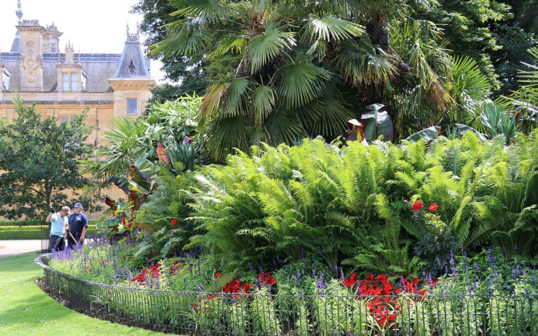 'Le Bon Jardinier', au service de son maître