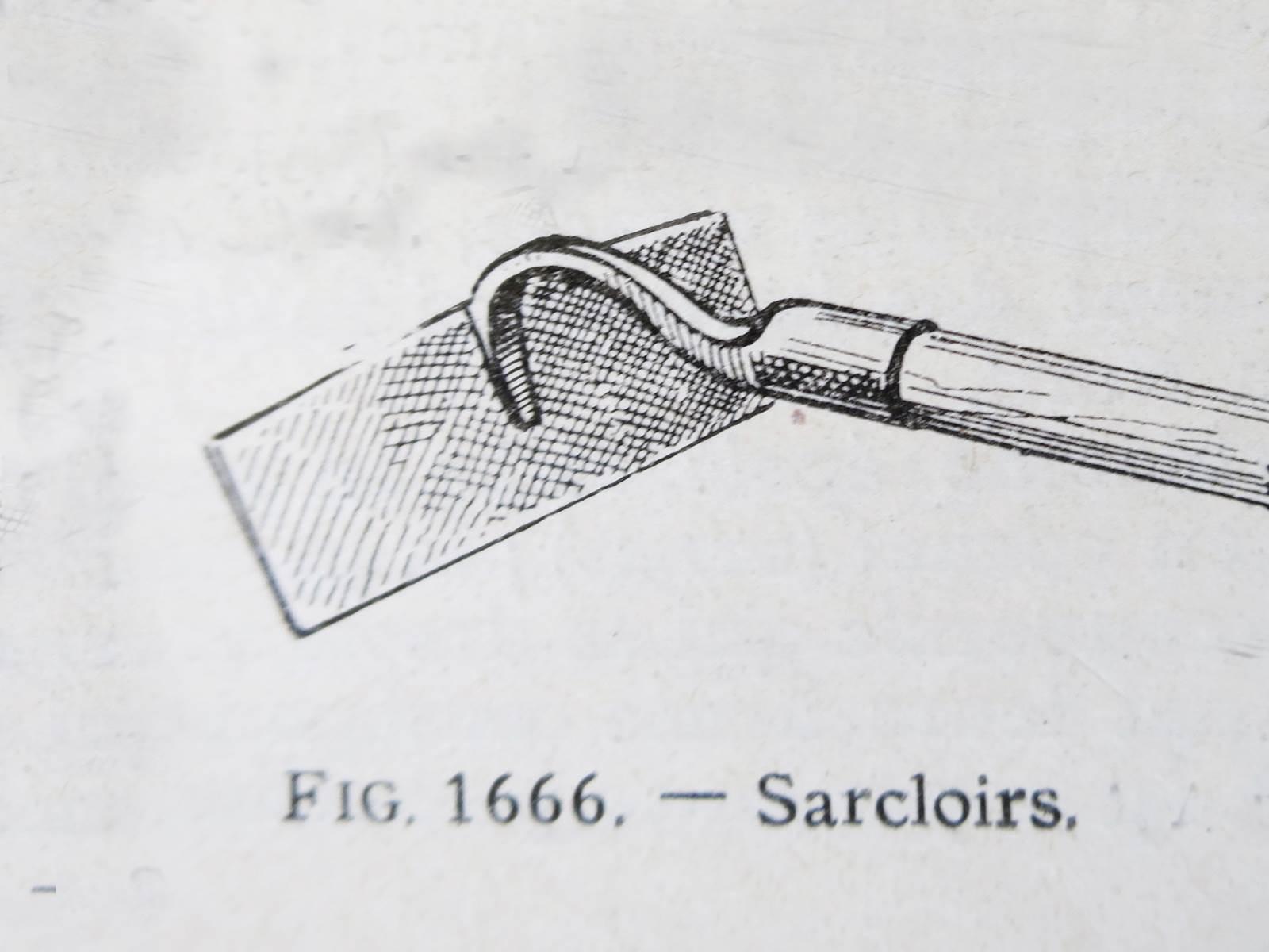 Sarcloir