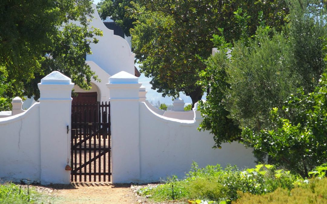 Winelands, les vignobles du Cap