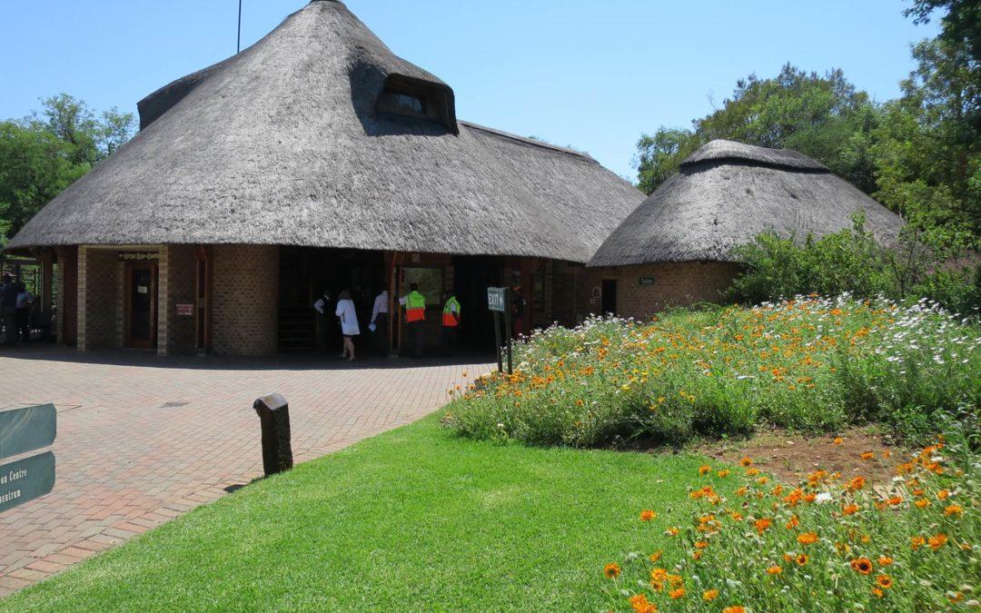 Jardin botanique Walter Sisulu, à Johannesburg