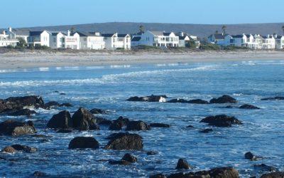 West Coast et Cederberg, au nord du Cap