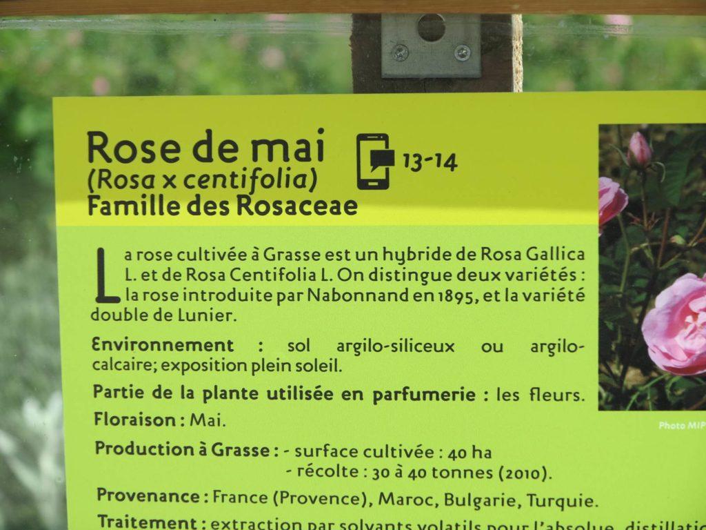 Jardins Musée International de la Parfumerie